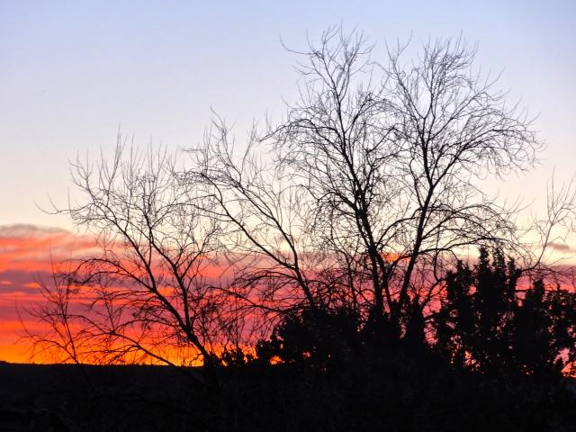 Morning Sky, January 29
